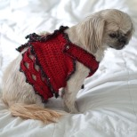 dog-dress-christmas-red17