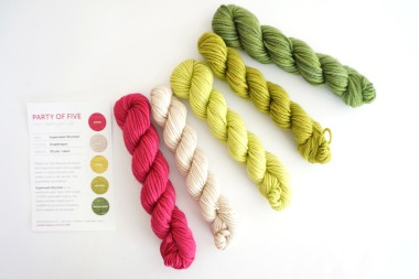 party-of-5-yarn-worsted-snapdragon