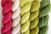 party-of-5-yarn-worsted-snapdragon1